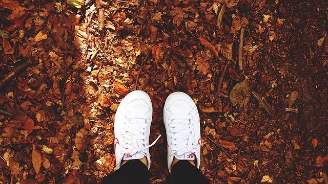 shoes-480217_640